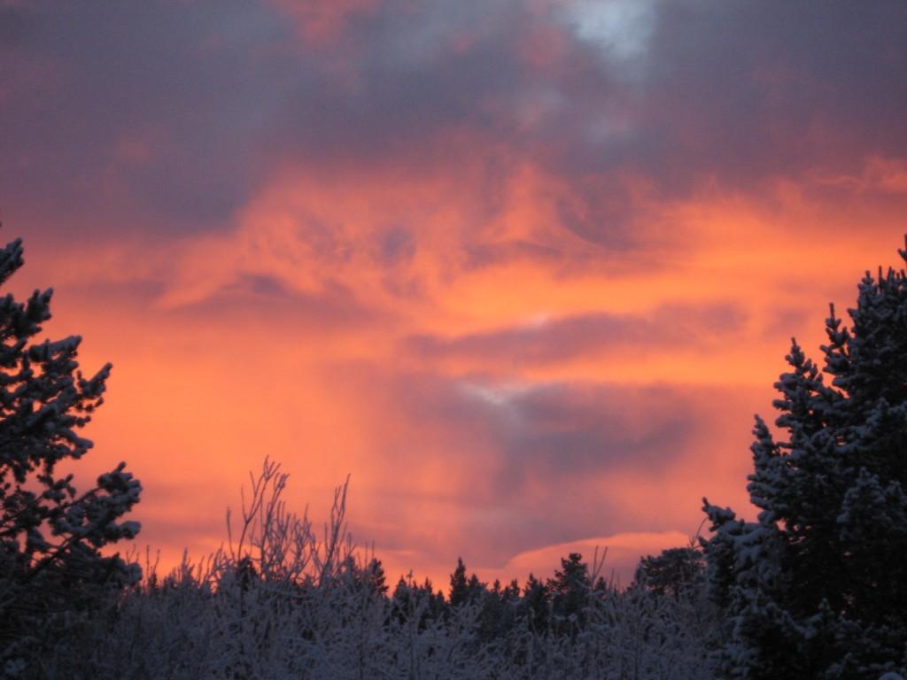 Winter sky on fire.